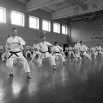 LTKF Spring Course 2015 gallery